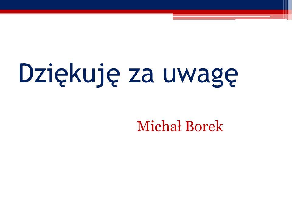 Dziękuję za uwagę Michał Borek