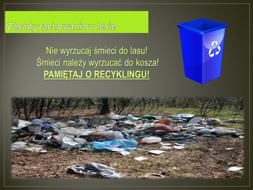 Nie wyrzucaj śmieci do lasu.Śmieci należy wyrzucać do kosza.