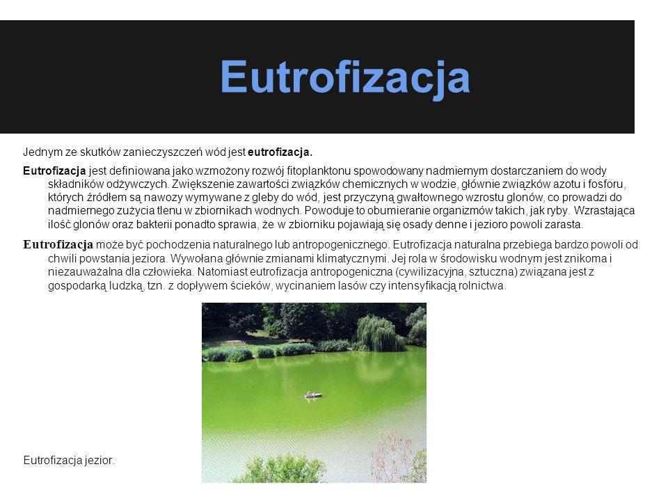 Eutrofizacja Jednym ze skutków zanieczyszczeń wód jest eutrofizacja. Eutrofizacja jest definiowana jako wzmożony rozwój fitoplanktonu spowodowany nadm