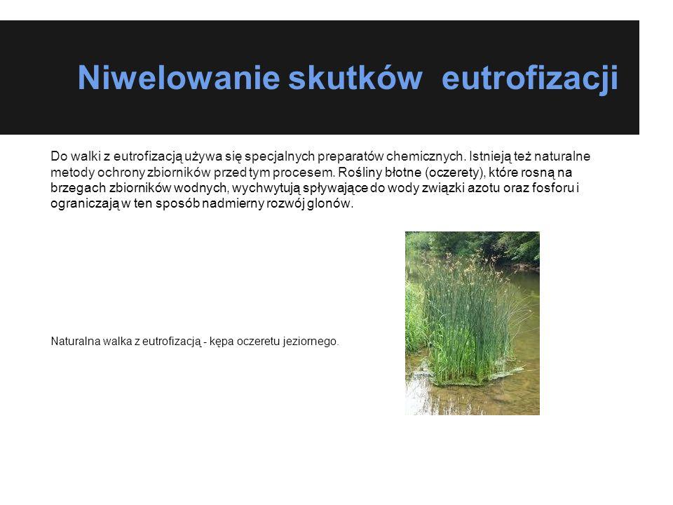 Niwelowanie skutków eutrofizacji Do walki z eutrofizacją używa się specjalnych preparatów chemicznych. Istnieją też naturalne metody ochrony zbiornikó