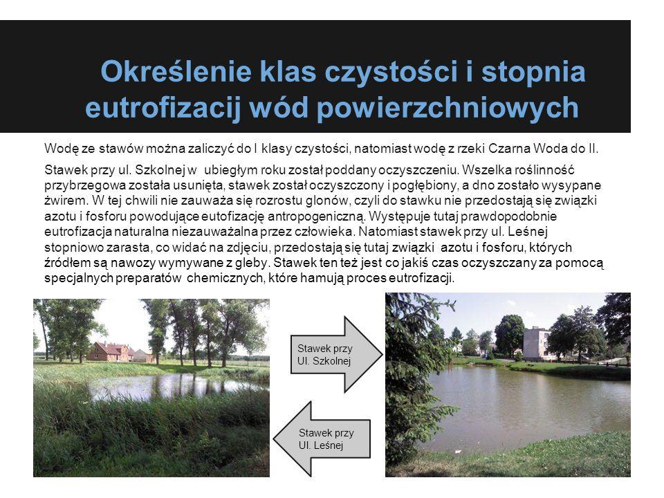 Określenie klas czystości i stopnia eutrofizacij wód powierzchniowych Wodę ze stawów można zaliczyć do I klasy czystości, natomiast wodę z rzeki Czarn