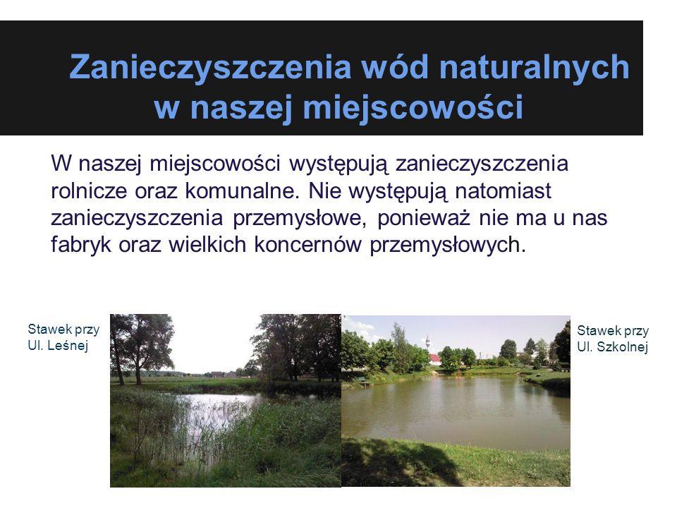 Zanieczyszczenia wód naturalnych w naszej miejscowości W naszej miejscowości występują zanieczyszczenia rolnicze oraz komunalne. Nie występują natomia