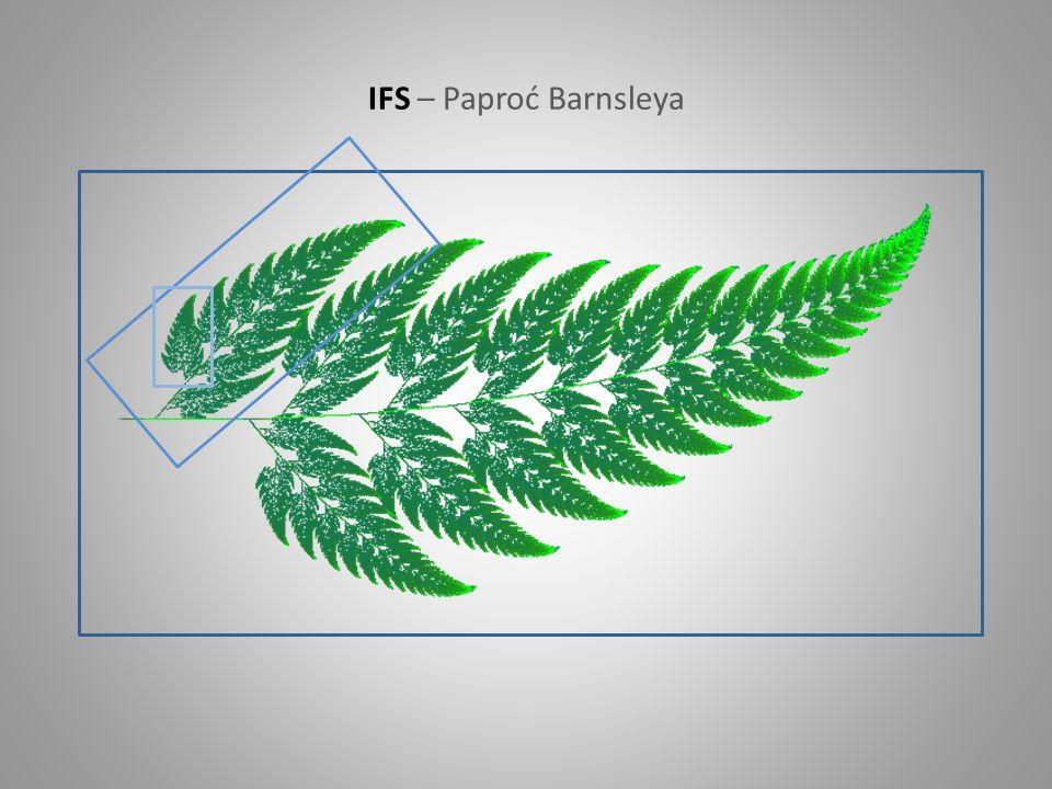 IFS – Paproć Barnsleya