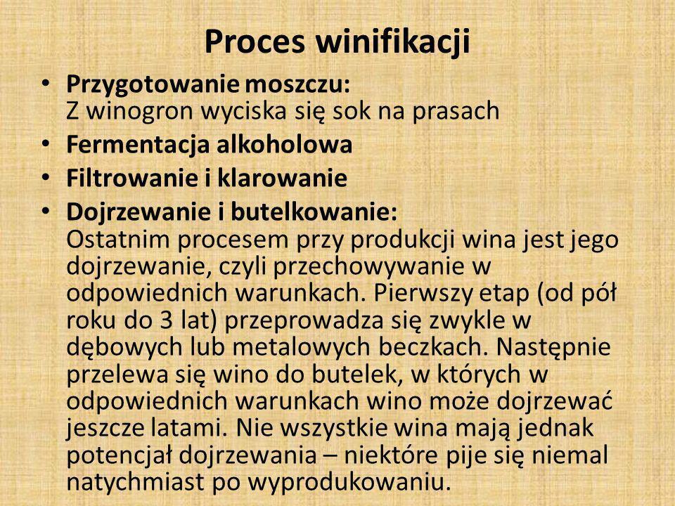 Proces winifikacji Przygotowanie moszczu: Z winogron wyciska się sok na prasach Fermentacja alkoholowa Filtrowanie i klarowanie Dojrzewanie i butelkow