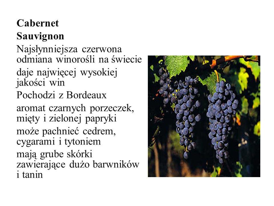 Cabernet Sauvignon Najsłynniejsza czerwona odmiana winorośli na świecie daje najwięcej wysokiej jakości win Pochodzi z Bordeaux aromat czarnych porzeczek, mięty i zielonej papryki może pachnieć cedrem, cygarami i tytoniem mają grube skórki zawierające dużo barwników i tanin