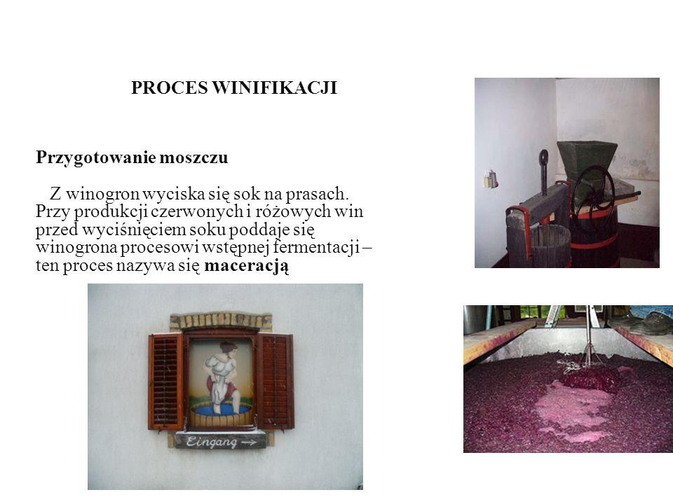 PROCES WINIFIKACJI Przygotowanie moszczu Z winogron wyciska się sok na prasach.