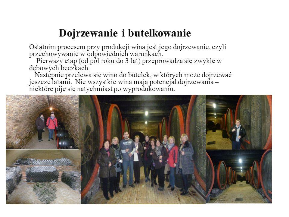 Dojrzewanie i butelkowanie Ostatnim procesem przy produkcji wina jest jego dojrzewanie, czyli przechowywanie w odpowiednich warunkach.