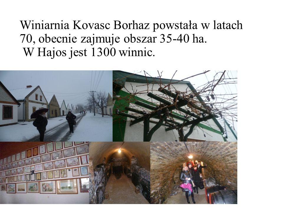 Winiarnia Kovasc Borhaz powstała w latach 70, obecnie zajmuje obszar 35-40 ha.