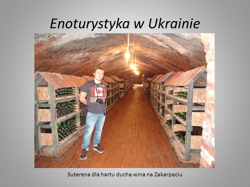 Enoturystyka w Ukrainie Suterena dla hartu ducha wina na Zakarpaciu