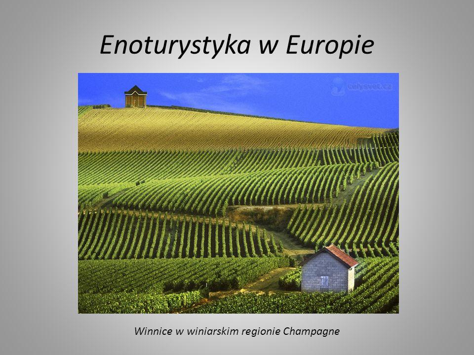 Enoturystyka w Europie Winnice w winiarskim regionie Champagne