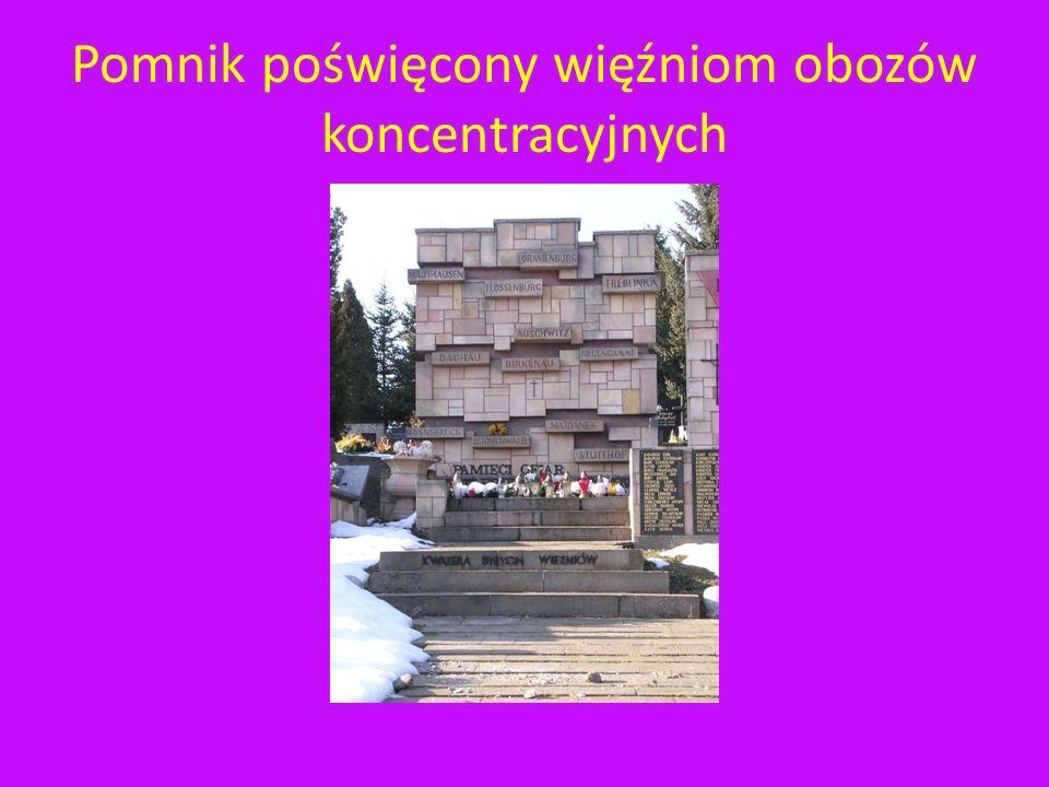 Pomnik poświęcony ofiarom obozów koncentracyjnych Pomnik ten znajduje się na Cmentarzu Komunalnym Wilkowyja.