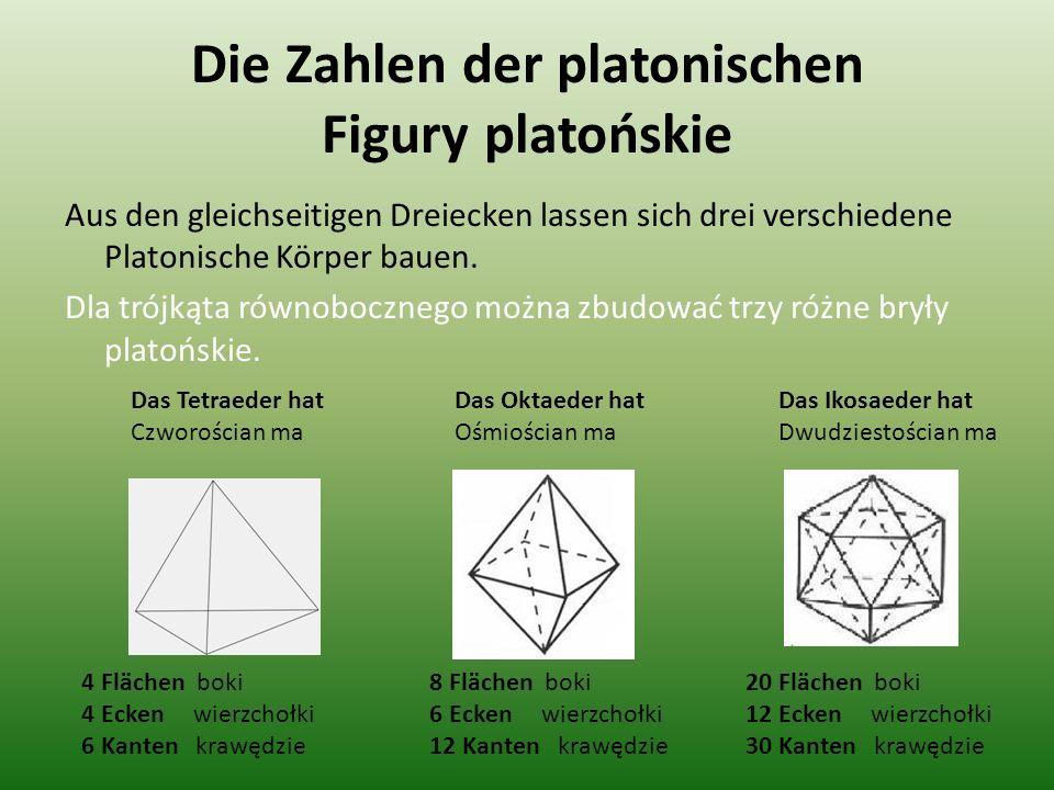 Die Zahlen der platonischen Figury platońskie Aus den gleichseitigen Dreiecken lassen sich drei verschiedene Platonische Körper bauen. Dla trójkąta ró