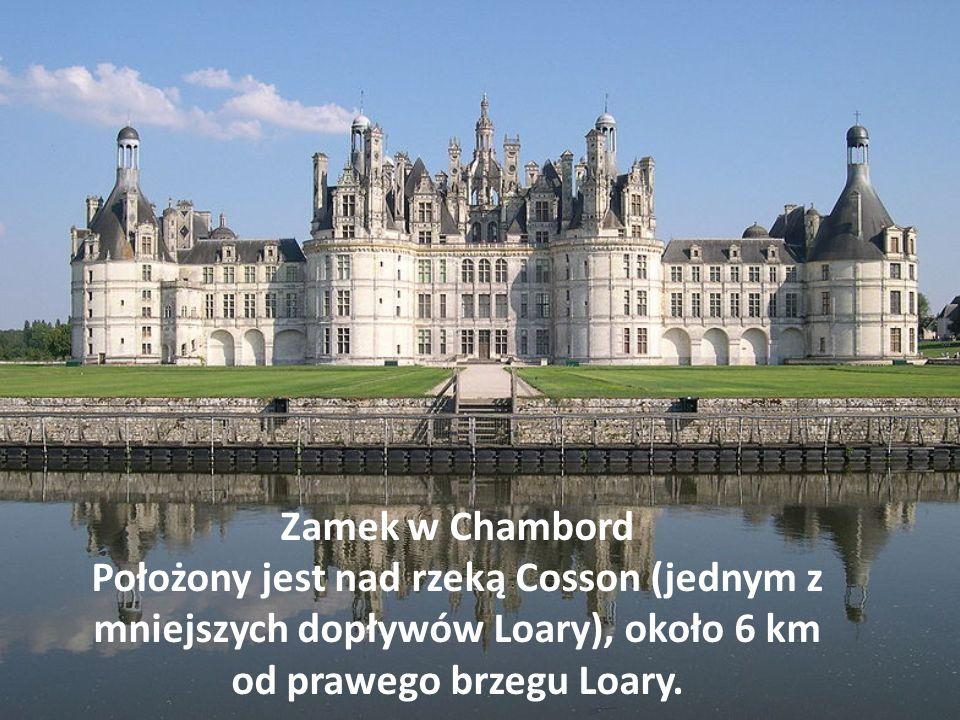 Zamek w Chambord Położony jest nad rzeką Cosson (jednym z mniejszych dopływów Loary), około 6 km od prawego brzegu Loary.