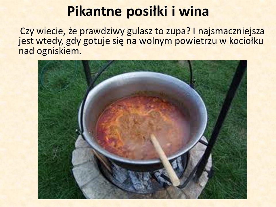 Pikantne posiłki i wina Czy wiecie, że prawdziwy gulasz to zupa.