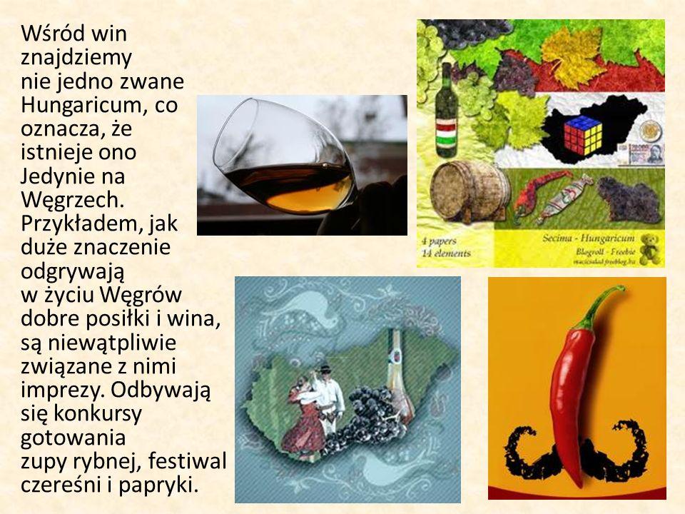 Wśród win znajdziemy nie jedno zwane Hungaricum, co oznacza, że istnieje ono Jedynie na Węgrzech.