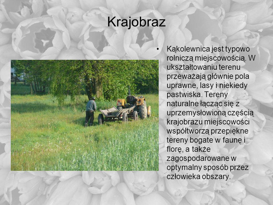 Kąkolewnica jest typowo rolniczą miejscowością. W ukształtowaniu terenu przeważają głównie pola uprawne, lasy i niekiedy pastwiska. Tereny naturalne ł