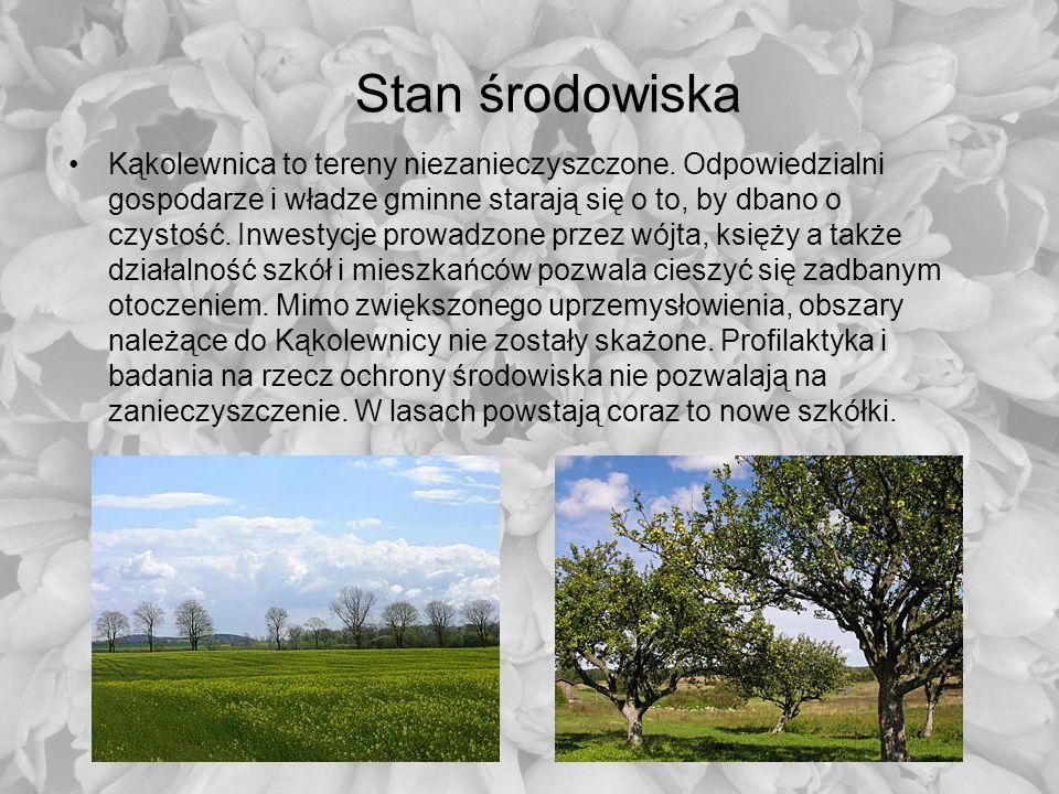 Stan środowiska Kąkolewnica to tereny niezanieczyszczone. Odpowiedzialni gospodarze i władze gminne starają się o to, by dbano o czystość. Inwestycje