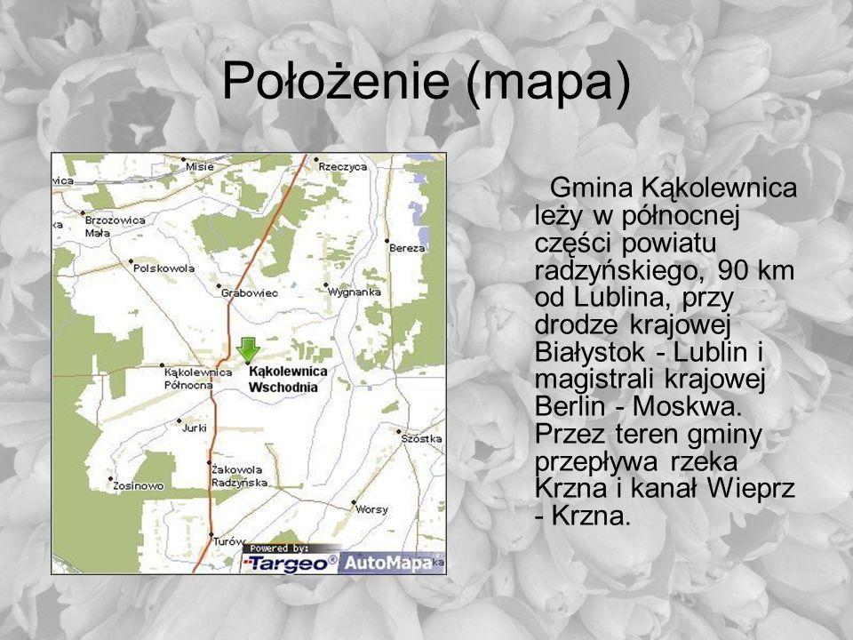 Położenie (mapa) Gmina Kąkolewnica leży w północnej części powiatu radzyńskiego, 90 km od Lublina, przy drodze krajowej Białystok - Lublin i magistral
