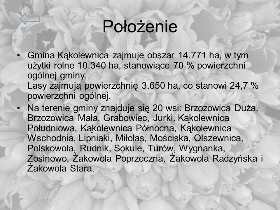 Położenie Gmina Kąkolewnica zajmuje obszar 14.771 ha, w tym użytki rolne 10.340 ha, stanowiące 70 % powierzchni ogólnej gminy. Lasy zajmują powierzchn