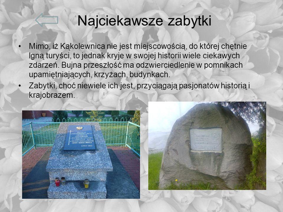 Najciekawsze zabytki Mimo, iż Kąkolewnica nie jest miejscowością, do której chętnie lgną turyści, to jednak kryje w swojej historii wiele ciekawych zd
