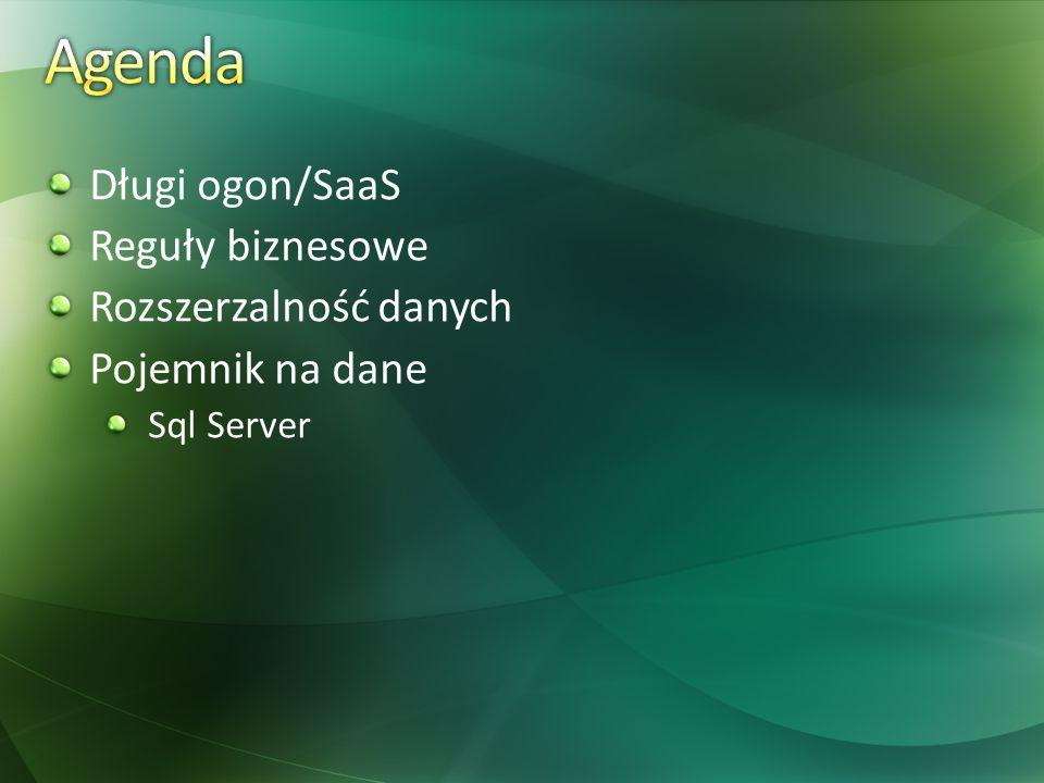 Długi ogon/SaaS Reguły biznesowe Rozszerzalność danych Pojemnik na dane Sql Server