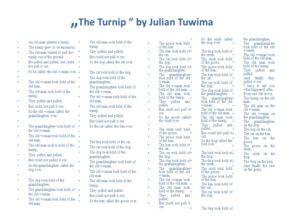 The Turnip by Julian Tuwima An old man planted a turnip. The turnip grew to be enormous. The old man started to pull the turnip out of the ground. He