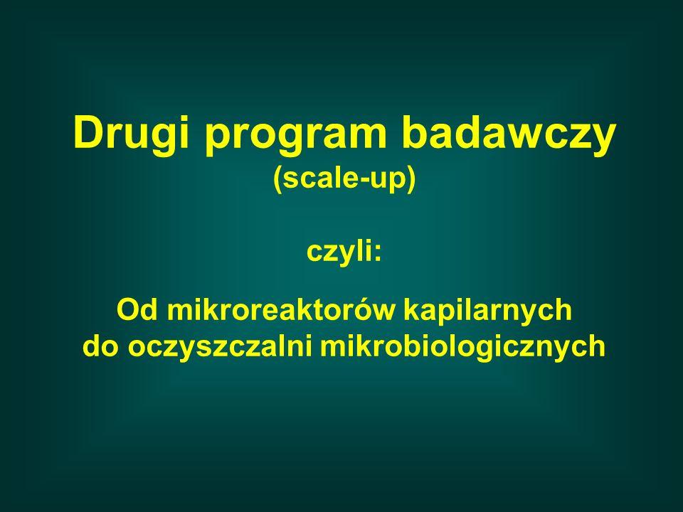 Drugi program badawczy (scale-up) czyli: Od mikroreaktorów kapilarnych do oczyszczalni mikrobiologicznych
