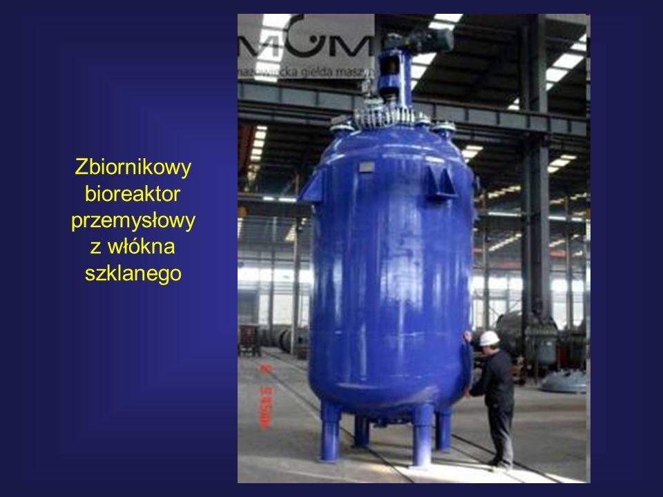 Zbiornikowy bioreaktor przemysłowy z włókna szklanego