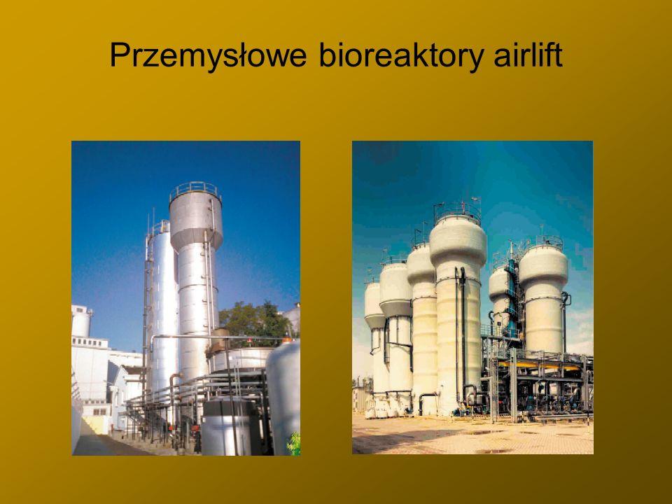 Przemysłowe bioreaktory airlift
