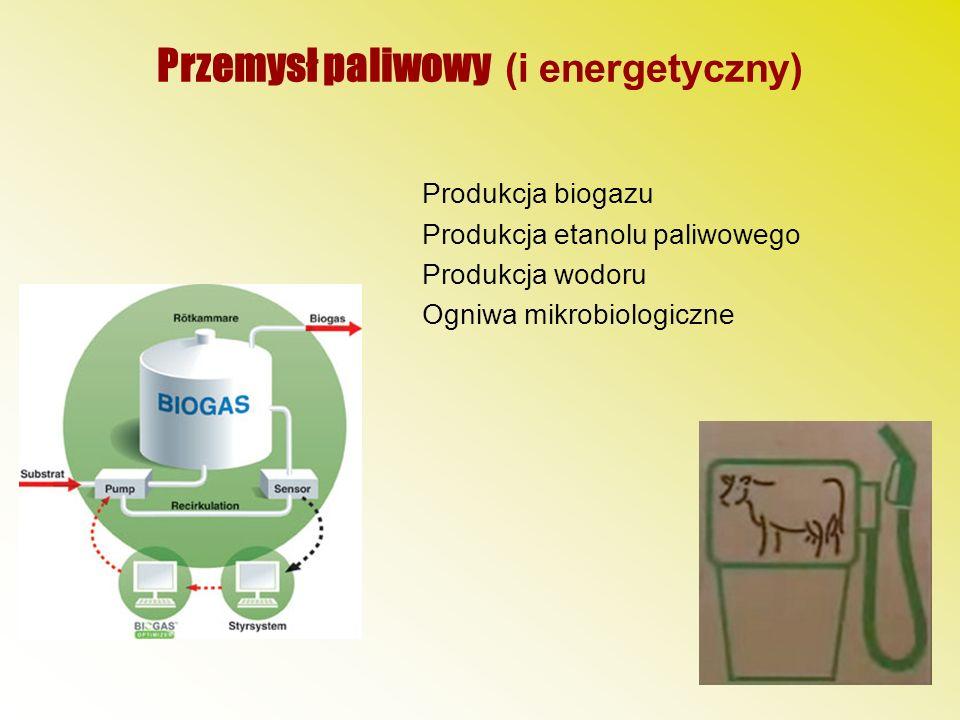 Przemysł paliwowy (i energetyczny) Produkcja biogazu Produkcja etanolu paliwowego Produkcja wodoru Ogniwa mikrobiologiczne