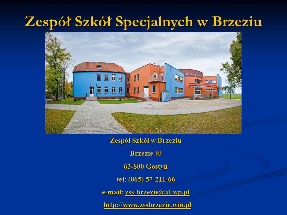 Zespół Szkół Specjalnych w Brzeziu Zespół Szkół w Brzeziu Brzezie 40 63-800 Gostyń tel: (065) 57-211-66 e-mail: zss-brzezie@xl.wp.pl zss-brzezie@xl.wp