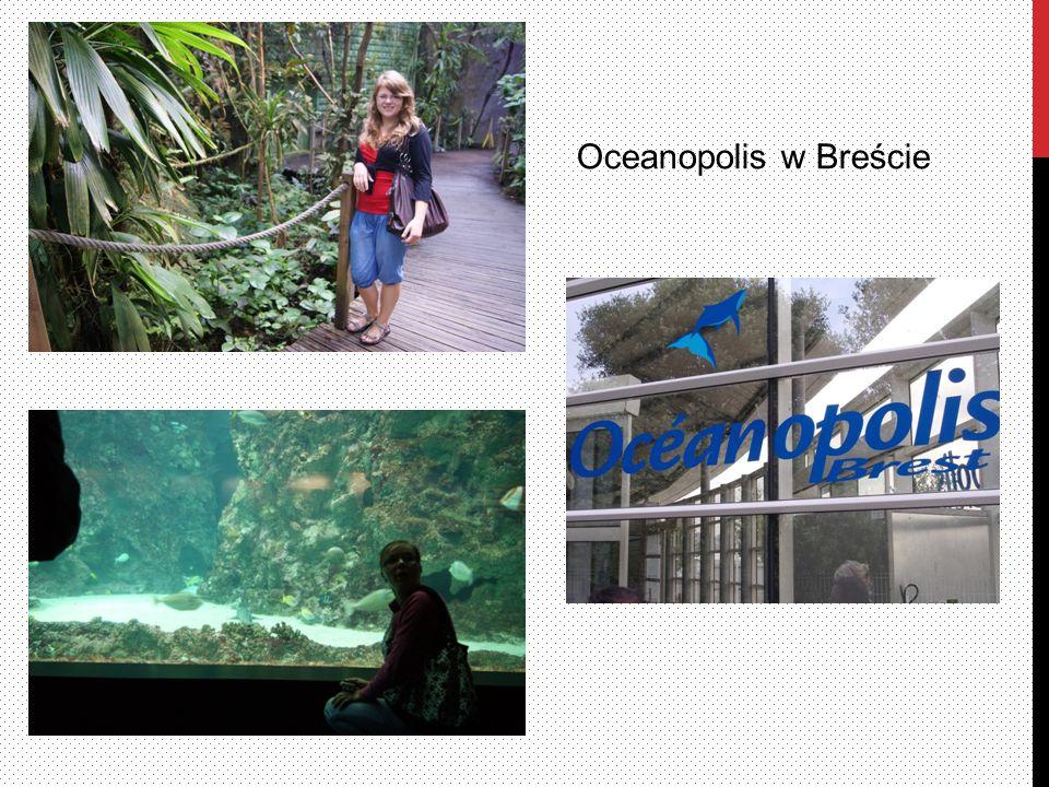 Oceanopolis w Breście