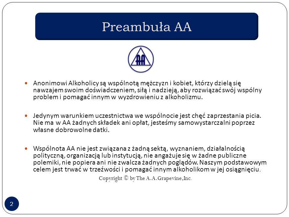 Celem wszystkich mityngów AA, jak stwierdza Preambuła, jest dzielenie się nawzajem swoim doświadczeniem, siłą i nadzieją, aby rozwiązać swój problem i pomagać innym w wyzdrowieniu z alkoholizmu .