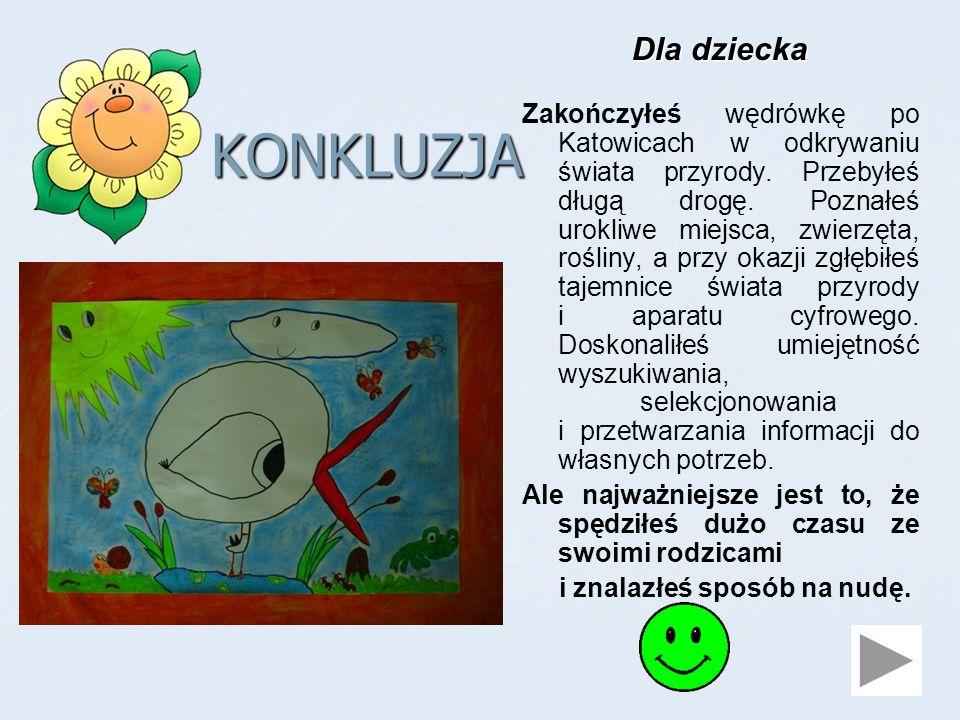 KONKLUZJA Dla dziecka Zakończyłeś wędrówkę po Katowicach w odkrywaniu świata przyrody.