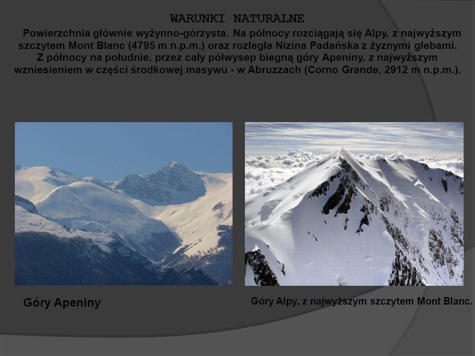 Góry Alpy, z najwyższym szczytem Mont Blanc.