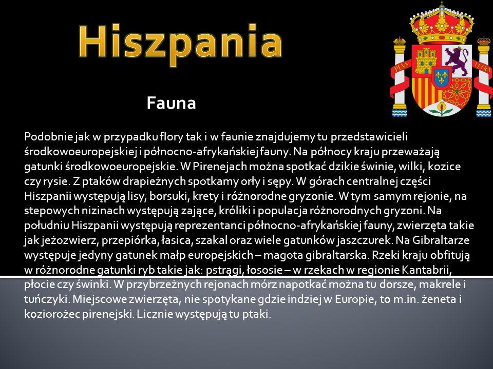 Podobnie jak w przypadku flory tak i w faunie znajdujemy tu przedstawicieli środkowoeuropejskiej i północno-afrykańskiej fauny.