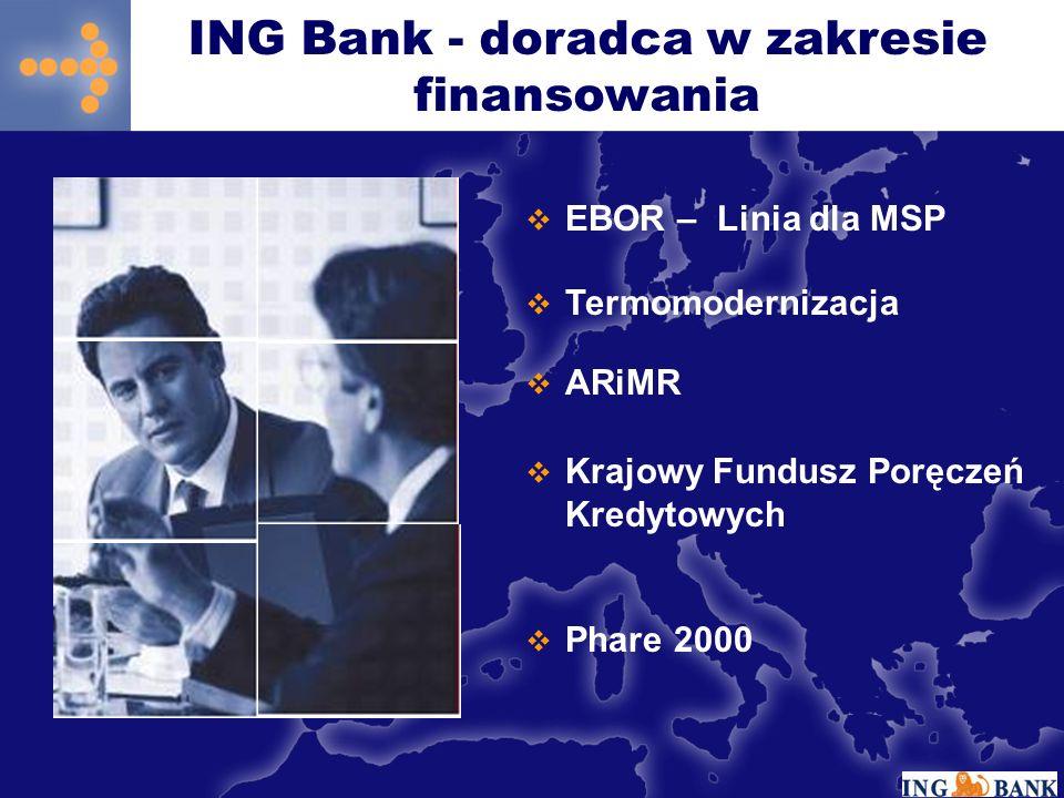 EBOR – Linia dla MSP Termomodernizacja ARiMR Krajowy Fundusz Poręczeń Kredytowych Phare 2000 ING Bank - doradca w zakresie finansowania