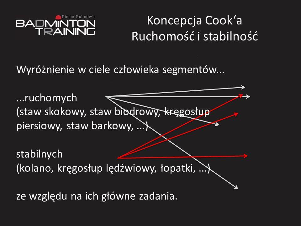 Koncepcja Cooka Ruchomość i stabilność Wyróżnienie w ciele człowieka segmentów......ruchomych (staw skokowy, staw biodrowy, kręgosłup piersiowy, staw