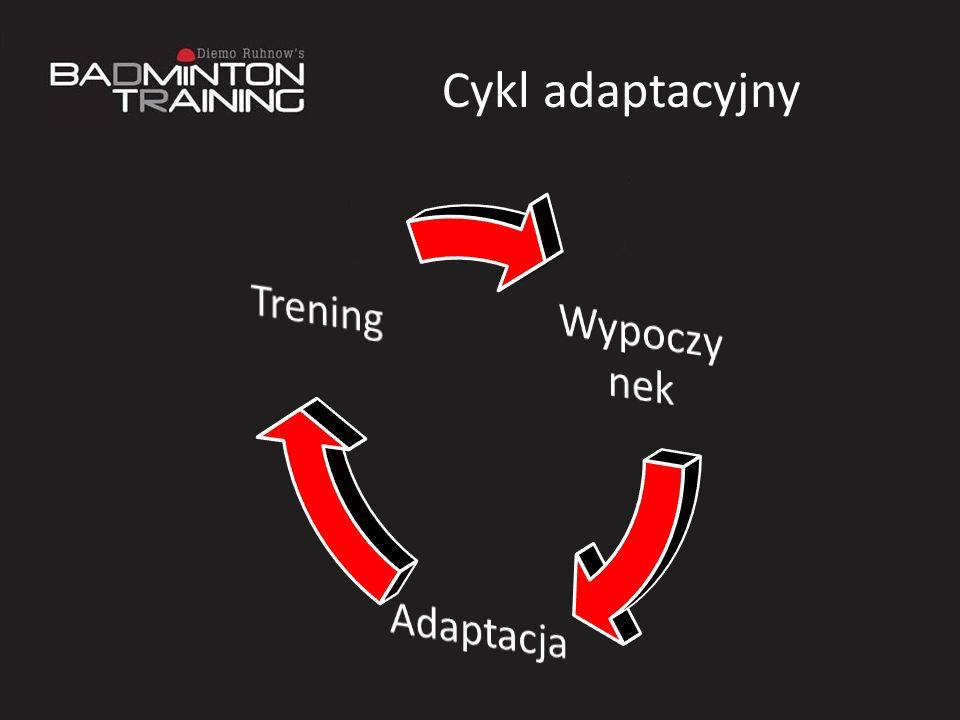 Cykl adaptacyjny
