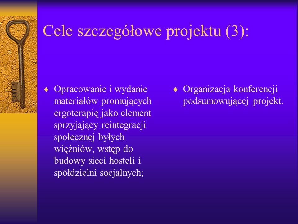 Cele szczegółowe projektu (3): Opracowanie i wydanie materiałów promujących ergoterapię jako element sprzyjający reintegracji społecznej byłych więźni