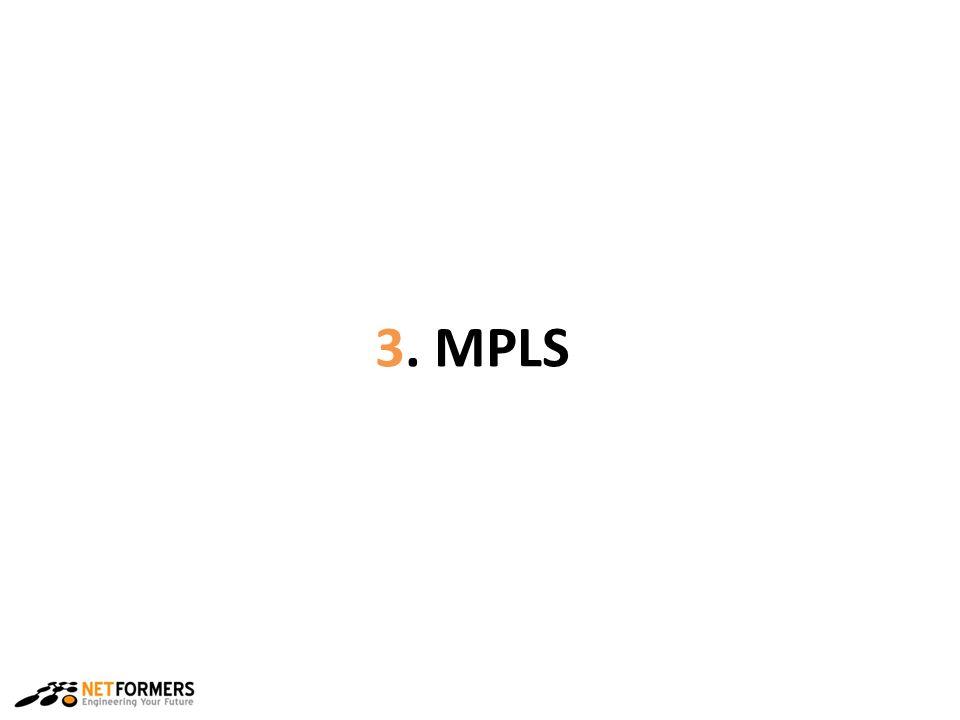3. MPLS