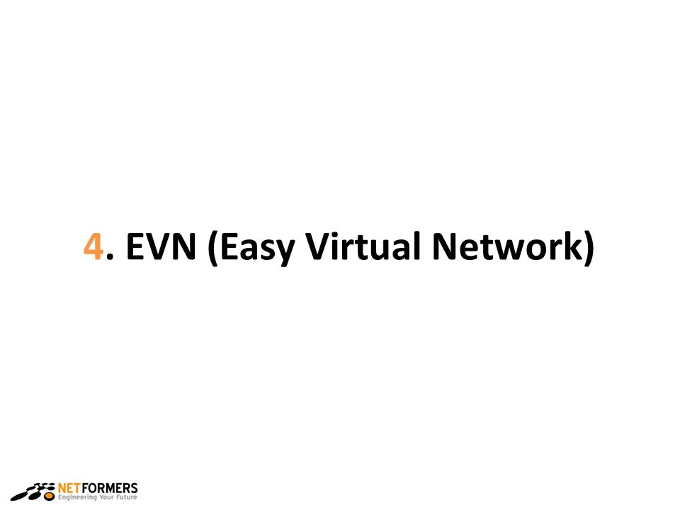 4. EVN (Easy Virtual Network)