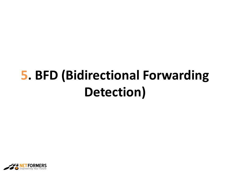 5. BFD (Bidirectional Forwarding Detection)