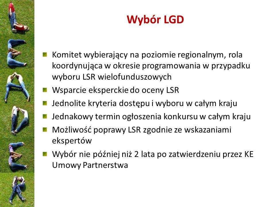 Wybór LGD Komitet wybierający na poziomie regionalnym, rola koordynująca w okresie programowania w przypadku wyboru LSR wielofunduszowych Wsparcie eks