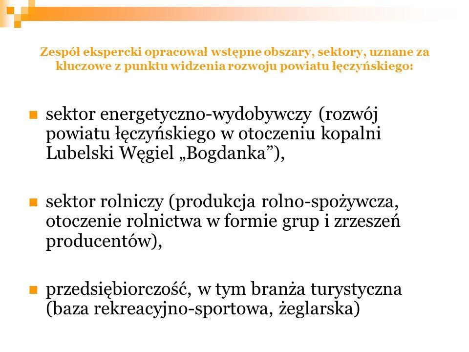 Zespół ekspercki opracował wstępne obszary, sektory, uznane za kluczowe z punktu widzenia rozwoju powiatu łęczyńskiego: sektor energetyczno-wydobywczy (rozwój powiatu łęczyńskiego w otoczeniu kopalni Lubelski Węgiel Bogdanka), sektor rolniczy (produkcja rolno-spożywcza, otoczenie rolnictwa w formie grup i zrzeszeń producentów), przedsiębiorczość, w tym branża turystyczna (baza rekreacyjno-sportowa, żeglarska)