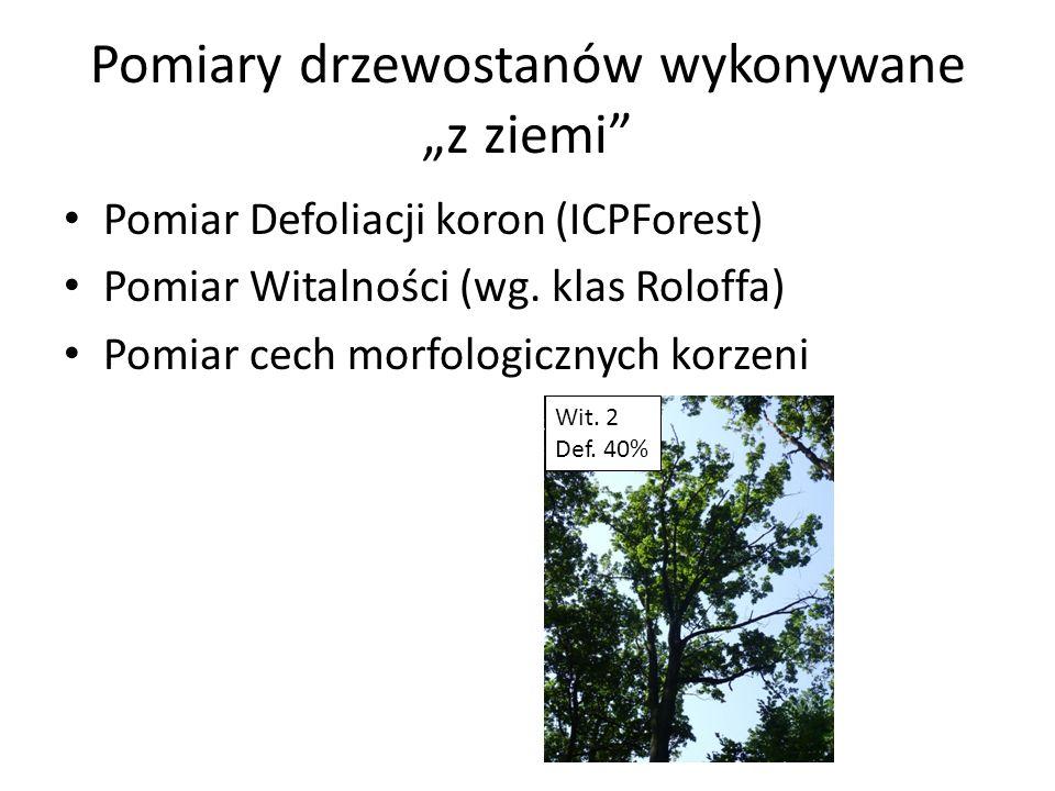 Pomiary drzewostanów wykonywane z ziemi Pomiar Defoliacji koron (ICPForest) Pomiar Witalności (wg. klas Roloffa) Pomiar cech morfologicznych korzeni W
