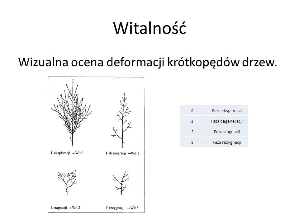 Witalność Wizualna ocena deformacji krótkopędów drzew. 0Faza eksploracji 1Faza degeneracji 2Faza stagnacji 3Faza rezygnacji