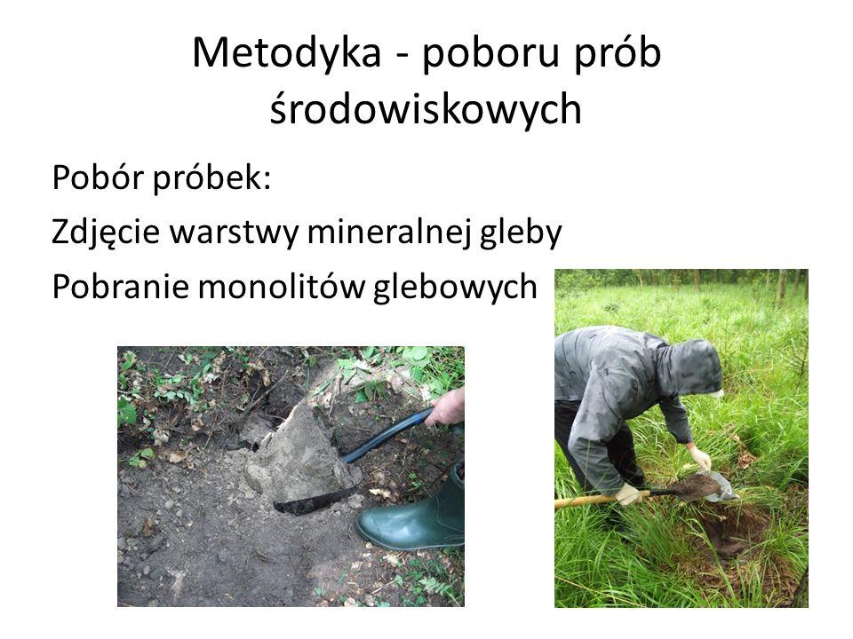 Metodyka - poboru prób środowiskowych Pobór próbek: Zdjęcie warstwy mineralnej gleby Pobranie monolitów glebowych