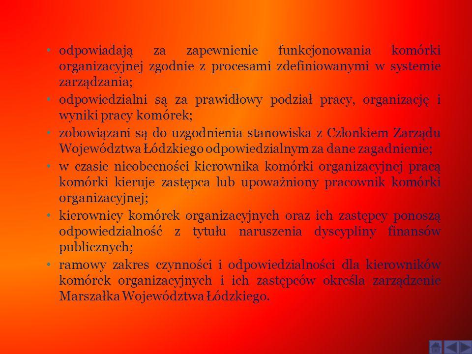 odpowiadają za zapewnienie funkcjonowania komórki organizacyjnej zgodnie z procesami zdefiniowanymi w systemie zarządzania; odpowiedzialni są za prawi