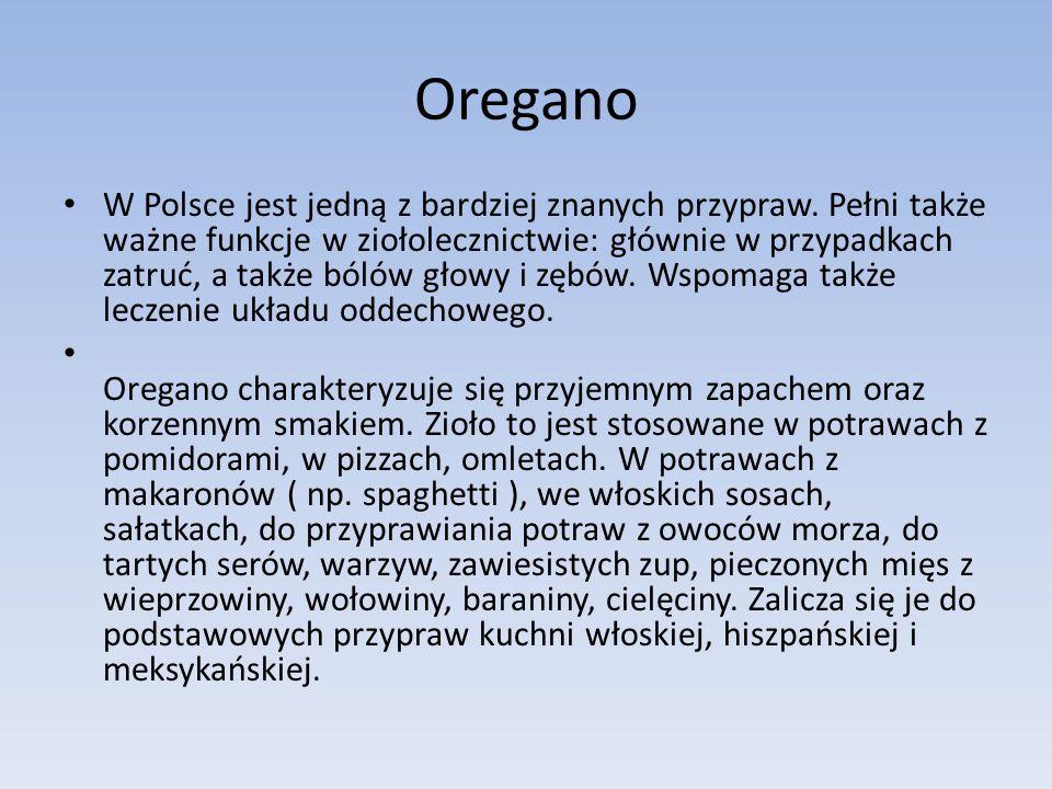 Oregano W Polsce jest jedną z bardziej znanych przypraw.